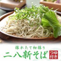 本生新そばつゆ付セット【6食】
